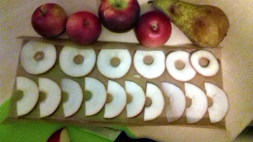 Domowa suszarnia - jabłka